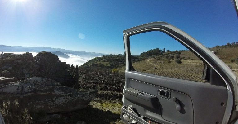Winter fall over Douro Valley