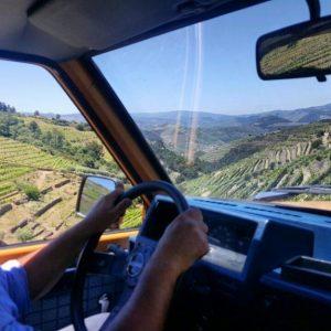 Douro Wine & Olive Oil Tour